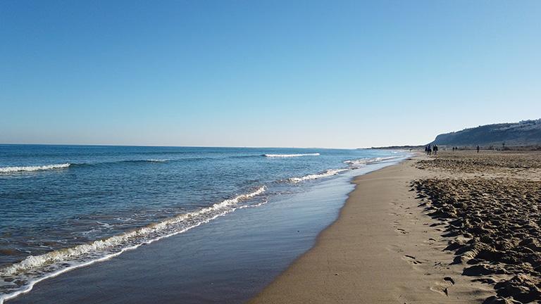 Playas y Calas en Torrevieja